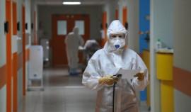 За сутки в Чеченской Республике выявили 87 случаев коронавируса