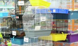 В Госдуме предложили запретить продажу животных через зоомагазины и птичьи рынки