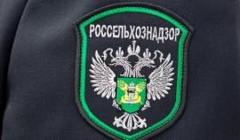 Россельхознадзор временно запретил ввозить в Россию томаты и перец из Армении и Узбекистана
