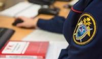 МВД возбудило дело о мошенничестве против лжеинвалида Лизан Исаковой