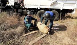 В Чеченской Республике сотрудники МЧС обезвредили авиабомбу, пролежавшую под землей более 20 лет