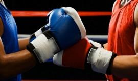 В Гойтах состоялся чемпионат ЧР по боксу