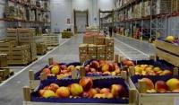 Минсельхоз ЧР повысит самообеспеченность региона основными видами сельхозпродукции