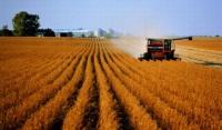 В Чечне сформирована государственная комиссия по мониторингу сельскохозяйственных угодий