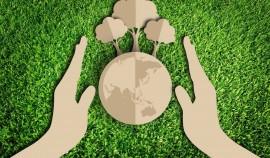 В Грозном и в Наурском районе прошла экологическая акция