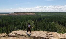 Туристический кешбэк для школьников и молодежи могут запустить летом