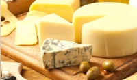 Итальянские предприниматели планируют запустить в Чечне производство сычужных сыров