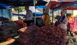 В 5 районах ЧР зафиксировано снижение цен на сезонные овощи