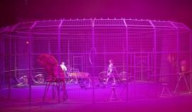 Дети погибших сотрудников Росгвардии ЧР посетили цирковое представление