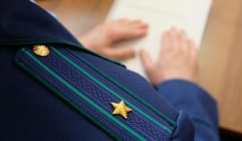 Прокуратура ЧР проверит сведения об избиении мачехой малолетних девочек