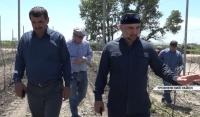 Министр сельского хозяйства ЧР посетил одну из крупнейших в регионе агрофирм - «Луч 15»