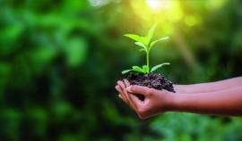 Объявлен ежегодный конкурс на соискание звания лауреата Международной экологической премии