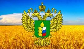 Россия поставила рекорд по поставкам продовольствия за рубеж в 2020 году