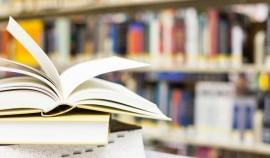 Министерство просвещения России разработало новый курс обществознания для школ