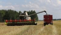 Более 320 млн рублей выделят на развитие сельского хозяйства в ЧР