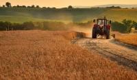 Арендаторы государственных сельхозземель в ЧР освобождены от уплаты аренды на три месяца.