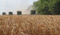 В Чеченской Республике начался сбор урожая ржи, пшеницы и ячменя