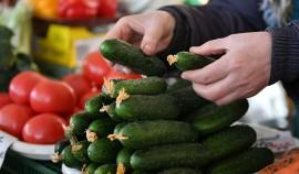 В ЧР замедлился рост цен на картофель и огурцы
