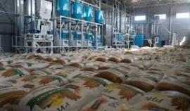В Чеченской Республике до конца 2020 года наладят производство и переработку риса