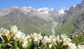Новые идеи для путешествий по Северному Кавказу появились на сервисе Russpass