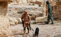 Вооруженными силами РФ за неделю обезврежено 88 фугасов и 15 противотанковых мин в Сирии