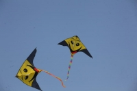 13 октября - Всемирный день воздушных змеев