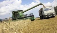 Почти 40 фермеров Чечни получили гранты на развития своего дела