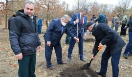 В Грозном заложили «Сад дружбы»