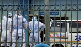 Эксперты ВОЗ прибыли в Индию, где от неизвестного заболевания пострадали 593 человека