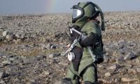 Российские саперы отправились на разминирование Пальмиры