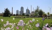 В текущем году в Грозном реконструируют 44 двора и 11 общественных территорий