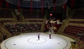 Правительство РФ утвердило правила предоставления грантов частным циркам