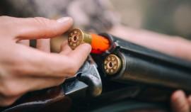 В Госдуме предложили расширить перечень оснований для отказа в лицензии на оружие