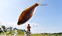 В ЧР пройдет первый фестиваль рыболовного туризма «Грозная рыбалка»