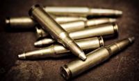 Житель Чечни получил один год колонии за незаконное хранение патронов