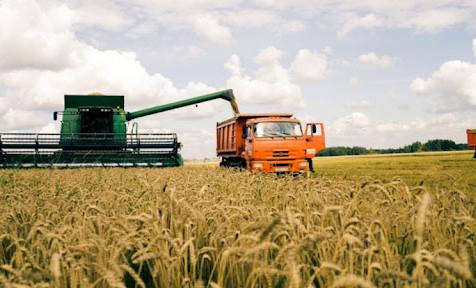 В Чеченской Республике уборка урожая зерновых составила 170 тыс. га