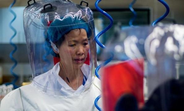 В Уханьском институте вирусологии отрицают предположения о создании коронавируса