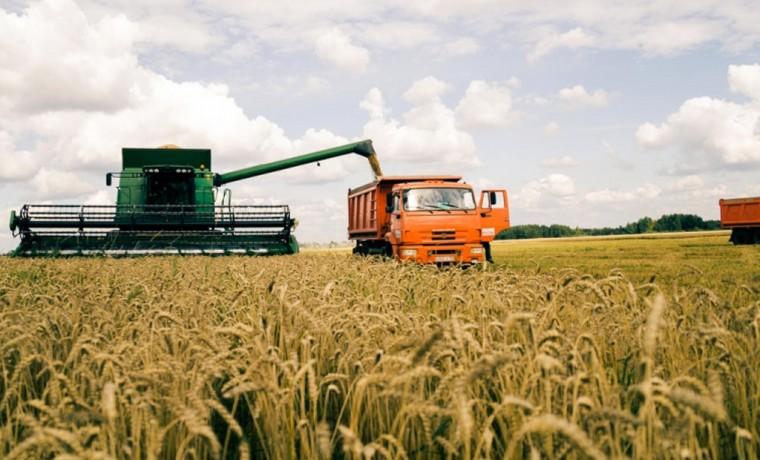 Аграрии ЧР проводят уборку зерновых с опережением графика