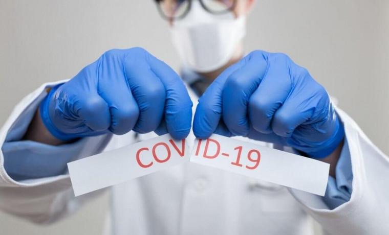 В Чеченской Республике за сутки от COVID-19 выздоровело 64 человека