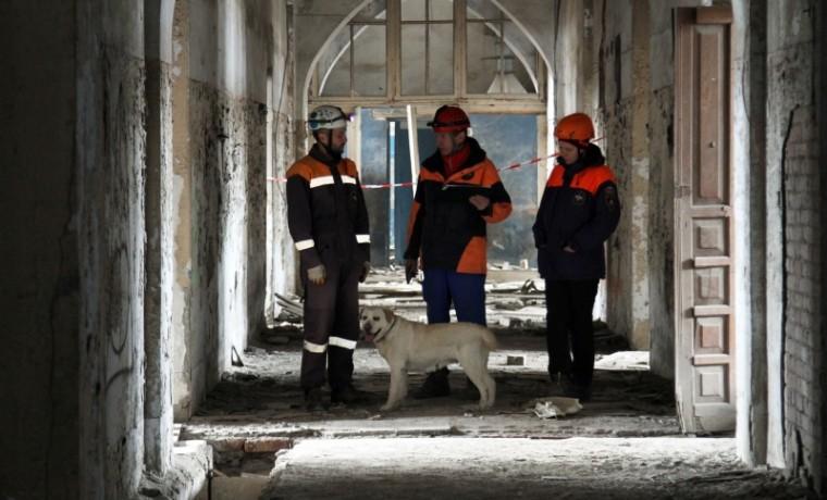 В Грозном кинологические расчеты МЧС России прошли сертификационные испытания
